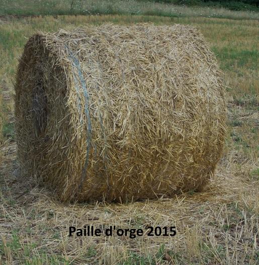 Paille 2015 002