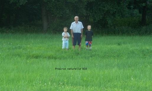 Prairie naturelle bio 1